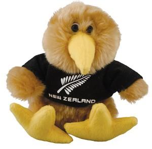 sports-fern-kiwi